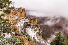 Grand Canyon i snö Arkivfoto
