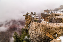 Grand Canyon i snö Arkivbild