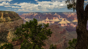 Grand Canyon inspirador dos EUA Imagens de Stock