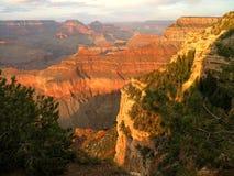 grand canyon jarzeniowy Zdjęcia Royalty Free