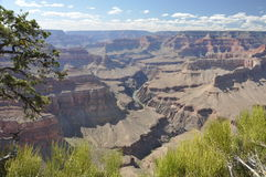 Grand Canyon Landscape Stock Photography
