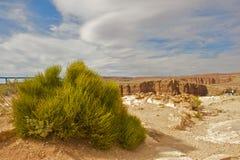 Grand Canyon Landscape. Desert Grand Canyon landscape in Arizona Stock Images