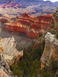Grand Canyon Landscape Arizona Stock Images
