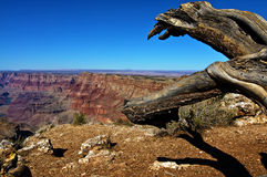 Grand canyon landscape on a sunny day Stock Photos