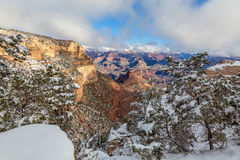Grand Canyon landskap i vinter Arkivfoton