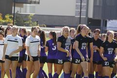 Grand Canyon Lopes soccer Stock Photography