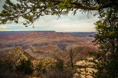 Grand Canyon majestoso, o Arizona, Estados Unidos Imagem de Stock