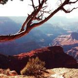 Grand Canyon min sikt Arkivfoto