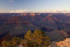 Grand Canyon Mohavepunkt Arkivbilder