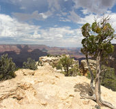 Grand Canyon. From Moran Point Royalty Free Stock Images