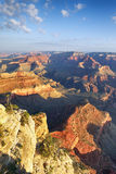 Grand Canyon in morning light Royalty Free Stock Image