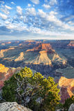 Grand Canyon with morning light Stock Photos