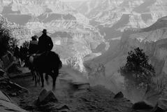 Grand Canyon Mull Riders Royalty Free Stock Photo