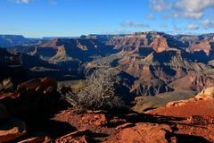 Grand Canyon National Park. Arizona, 2014 Fall Royalty Free Stock Photography