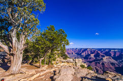 The Grand Canyon National Park Stock Photo