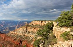 Grand Canyon National Park, Arizona, USA royalty free stock image