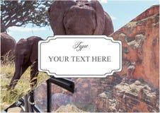 Grand Canyon - National Park Arizona USA Stock Image