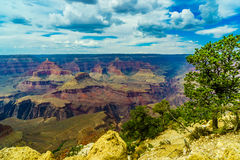 Grand Canyon National Park Mother Point and Amphitheater Stock Photography