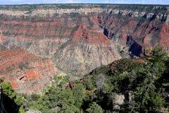 The grand canyon national park north rim arizona Royalty Free Stock Images