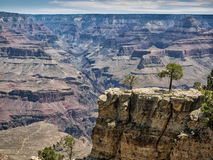 Grand Canyon National Park panorama Royalty Free Stock Photography