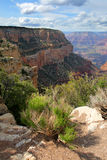 Grand Canyon National Park, USA Royalty Free Stock Images