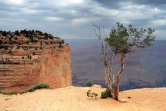 Grand Canyon National Park, USA Royalty Free Stock Photography