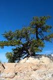 Grand Canyon National Park, USA Stock Photo