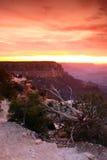 Grand Canyon National Park, USA Royalty Free Stock Photos