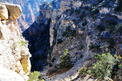 Grand Canyon nationalpark Royaltyfria Bilder