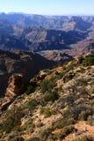 Grand Canyon nationalpark på en klar sommardag Arkivbilder