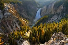 Grand Canyon nedgångar, Yellowstone nationalpark Royaltyfri Foto