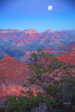 Grand Canyon at night Royalty Free Stock Image