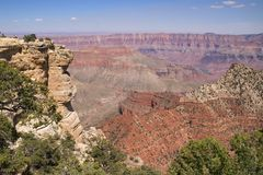 Grand Canyon North Rim Royalty Free Stock Image
