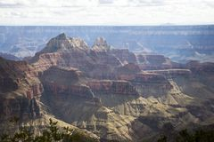 Grand Canyon (North Rim) (AC) Stock Photography