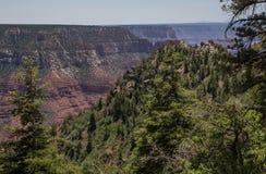 Grand Canyon North Rim Royalty Free Stock Image