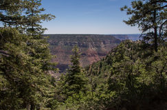 Grand Canyon North Rim Royalty Free Stock Photography