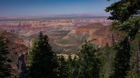 Grand Canyon North Rim Royalty Free Stock Photos