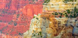 Grand Canyon, North Rim, Arizona, United States of America.  royalty free stock image