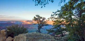 Grand Canyon, North Rim, Arizona, United States of America.  stock photos