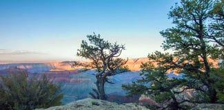 Grand Canyon, North Rim, Arizona, United States of America.  stock image