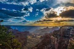 Grand Canyon North Rim Royalty Free Stock Images