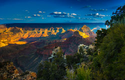 Grand Canyon North Rim Stock Images