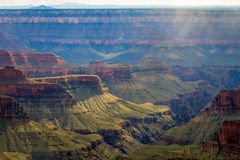 Grand Canyon North Rim Green With Trees Wisp of Verga Royalty Free Stock Images