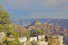 Grand Canyon North Rim Landscape Stock Image