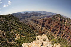 Grand Canyon North Rim View Stock Images