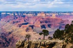grand canyon obręcz na południe Drzewa i skalisty outcrip w przedpolu; kolorowa czerwona formacja i chmury w tle Obraz Stock