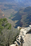 Grand Canyon Observation Point Stock Photo