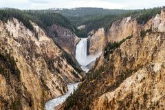 Free Grand Canyon Of Yellowstone The Most Beautiful In  Yellowstone National Park , Wyoming , United States Of America Royalty Free Stock Photography - 168008677