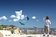 Free Grand Canyon Overlook Stock Photo - 3326660