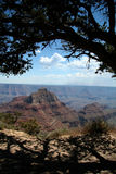 Grand Canyon Overlook Royalty Free Stock Photography